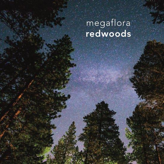 megaflora-album