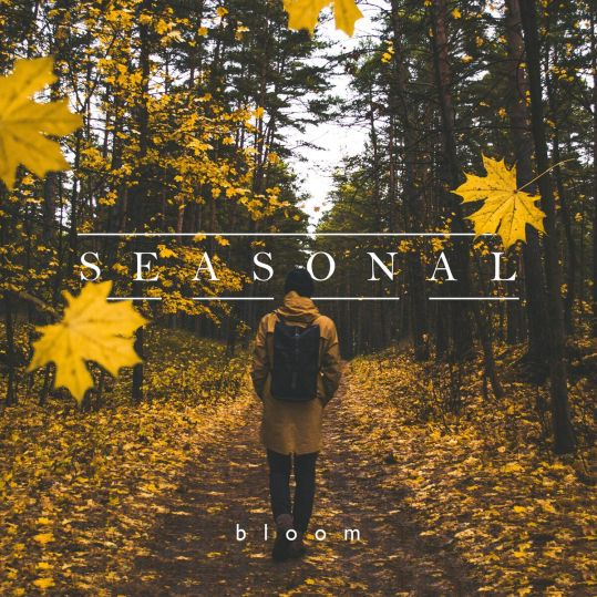seasonal bloom album
